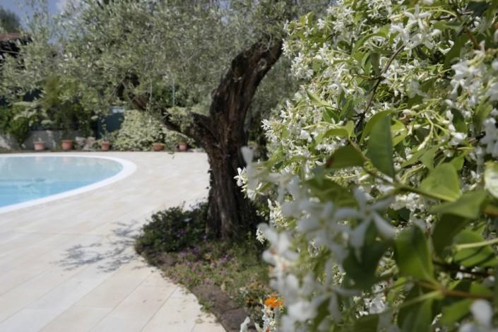 Camping delle rose Moniga del Garda