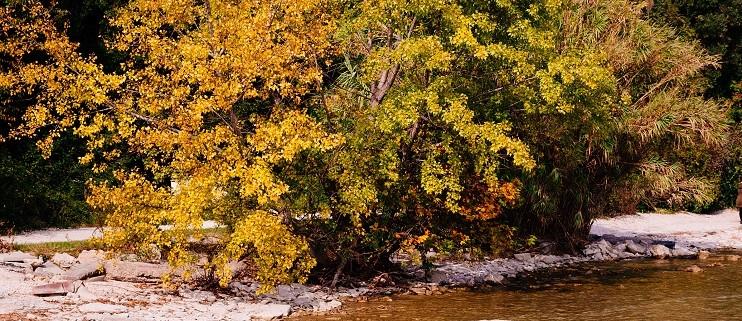 autumn lake garda