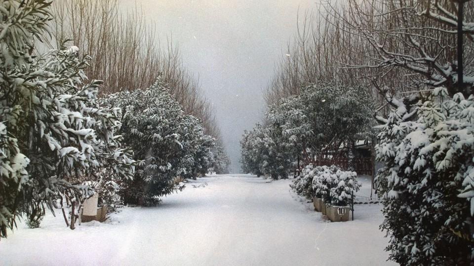 foto-campeggio-nevicata-1996-960x540