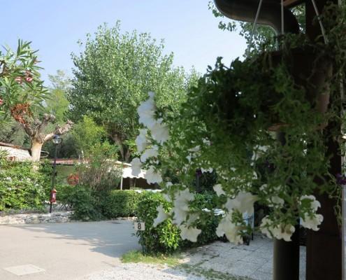 Piazzola Campeggio delle Rose